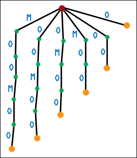 First Generation Suffix Tree for MOOMOO